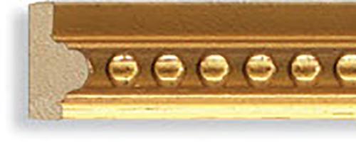 F1001